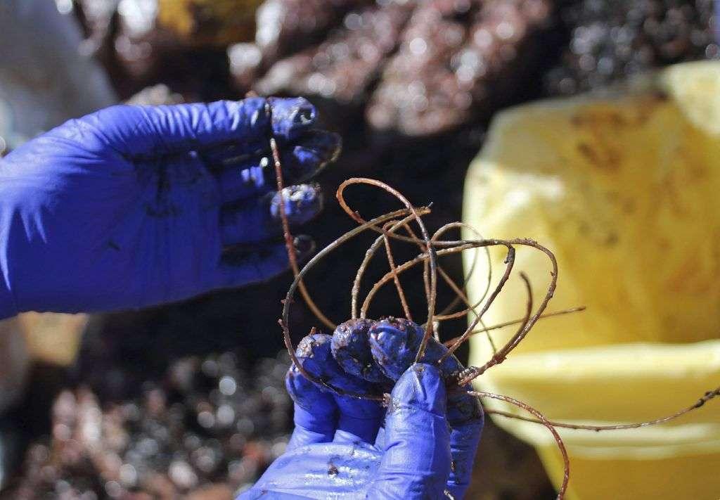 Porto Cervo, 2019. április 1. A SEAME állatvédõ szervezet által közreadott kép egy partra vetett bálna gyomrából kiszedett szemétrõl a Szardínián fekvõ Porto Cervo partjainál 2019. március 30-án. A nyolcméteres ámbráscet gyomrában 22 kilogramm emészthetetlen hulladékot, köztük klímacsövet, mûanyag edényeket, nejlonzacskókat, horgászzsinórokat, mosószer-csomagolásokat találtak, ami az állat pusztulását okozta. MTI/AP/SEAME Sardinia Onlus