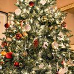 Tippek, Hogy A Legjobb Karácsonyfát Vásárolja Meg Otthonába